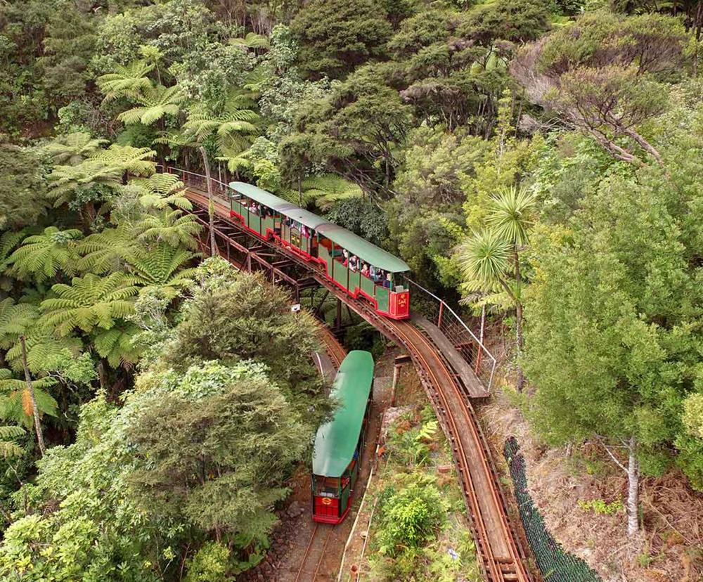 숲속의 기차