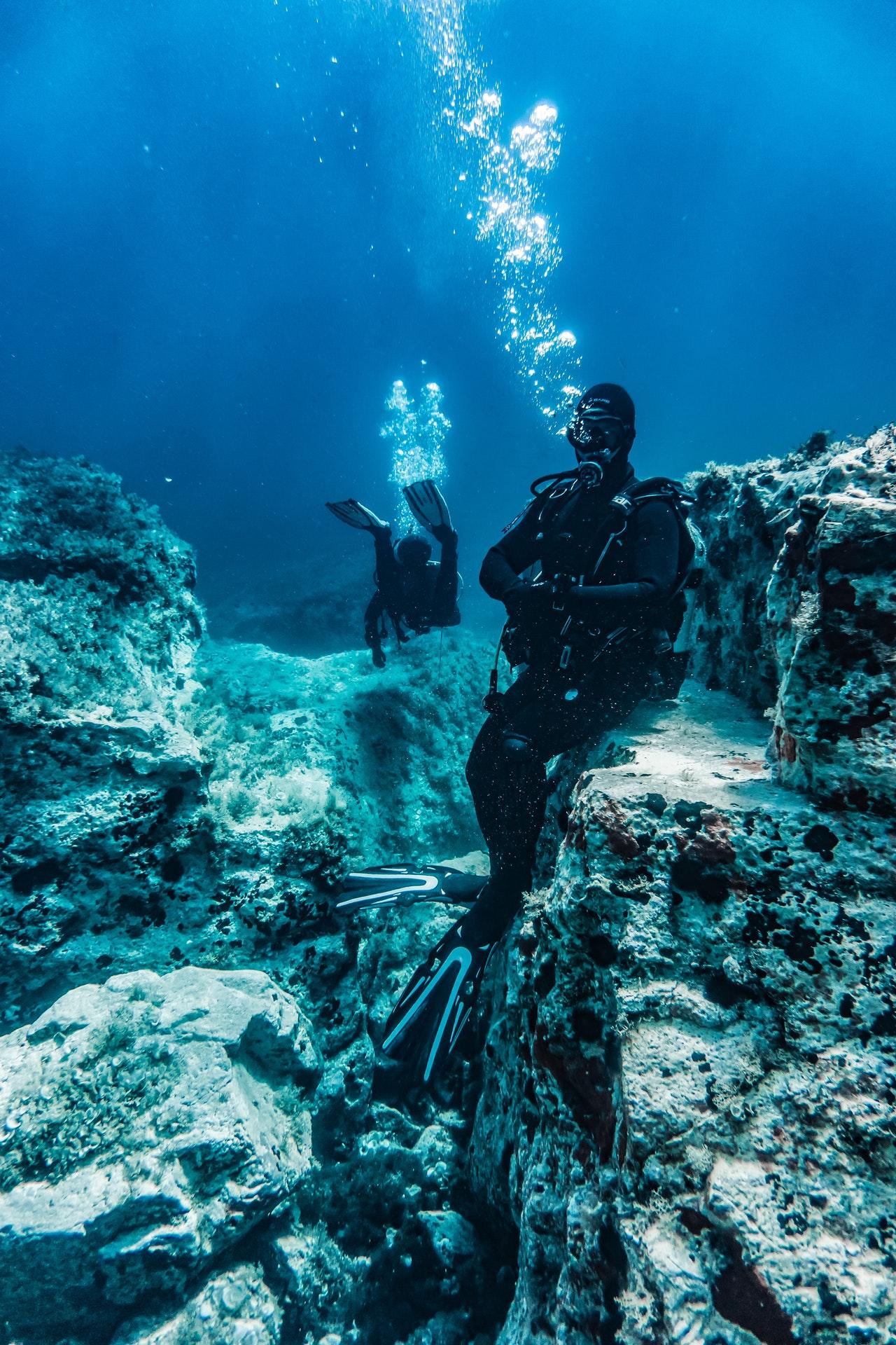 산호초 바다